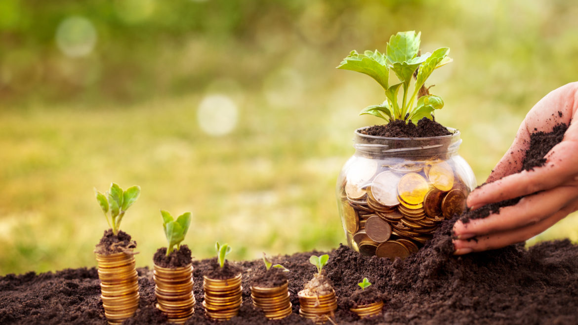 Credit Unions and Farming: What We Can Learn About Business Sustainability