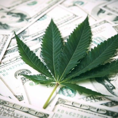 Is Cannabis the Next Golden Opportunity for Credit Unions?
